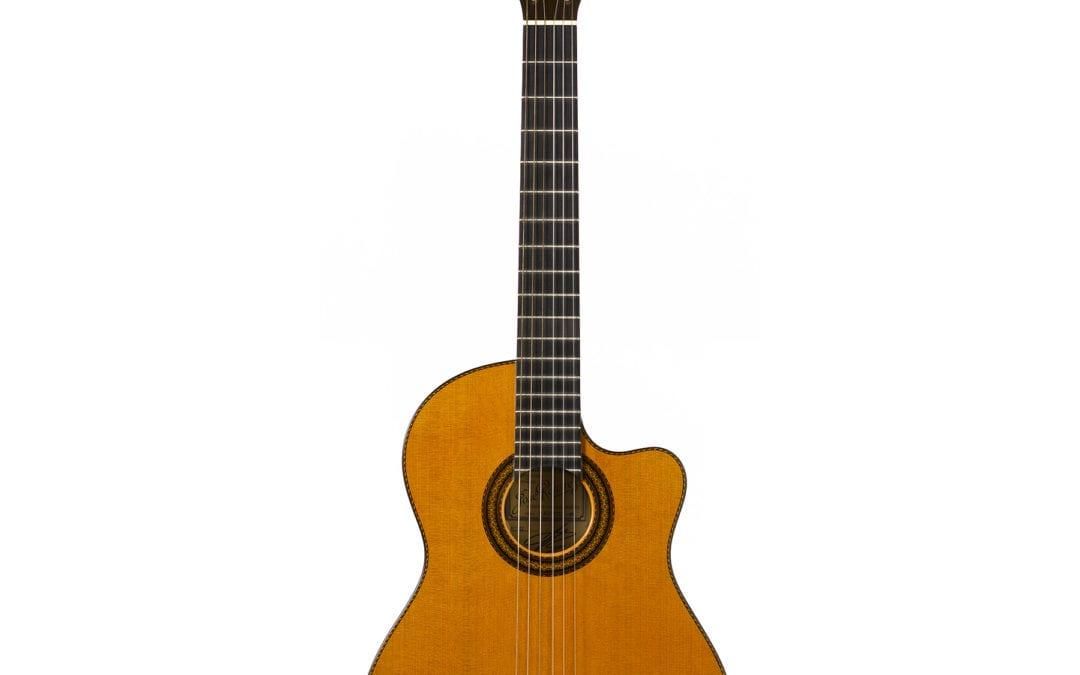 Cutaway C86 CWE Guitar