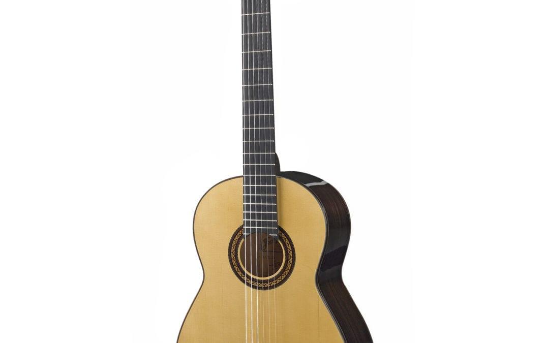 Flamenca Negra Guitar